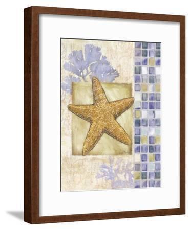 Mosaic Shell Collage II-Paul Brent-Framed Art Print
