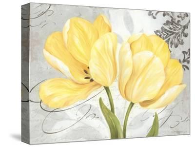 Colori Yellow II-Pamela Gladding-Stretched Canvas Print