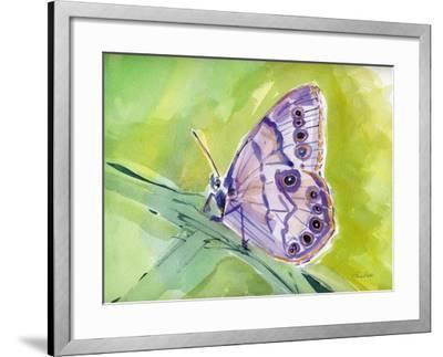 Watercolor Butterfly IV-LuAnn Roberto-Framed Art Print