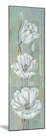 Florentine Tulips-Paul Brent-Mounted Art Print