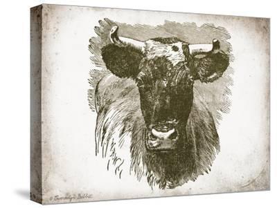 Cow Face I-Gwendolyn Babbitt-Stretched Canvas Print