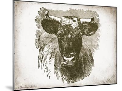 Cow Face I-Gwendolyn Babbitt-Mounted Art Print