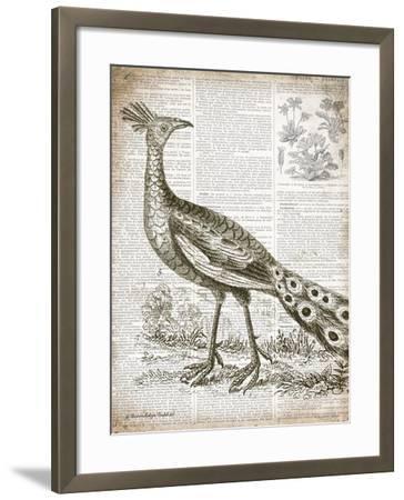 Vintage Bird I-Gwendolyn Babbitt-Framed Art Print