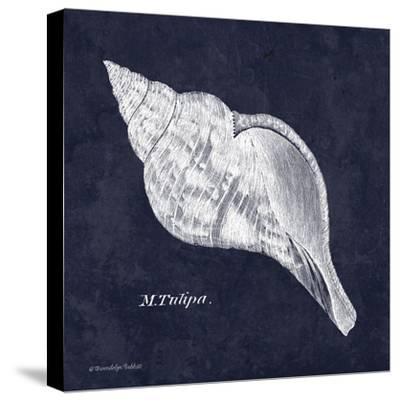 Indigo Shell III-Gwendolyn Babbitt-Stretched Canvas Print