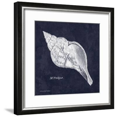 Indigo Shell III-Gwendolyn Babbitt-Framed Art Print