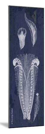 Indigo Feathers I-Gwendolyn Babbitt-Mounted Art Print