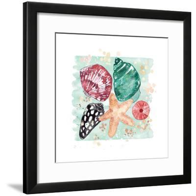 Beachcomber Shells-Sara Berrenson-Framed Art Print