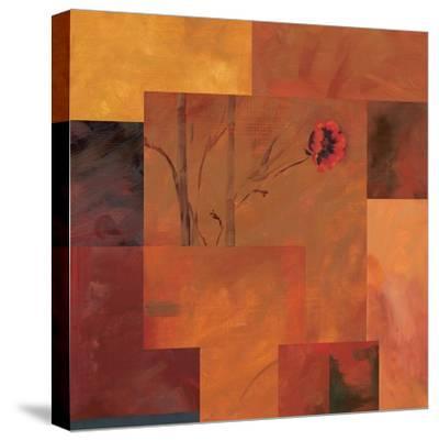 Goa Poppy II-Paul Brent-Stretched Canvas Print