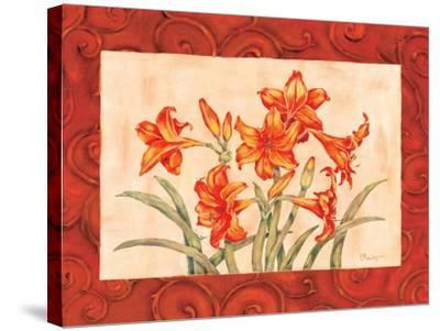 Linen Scroll Amaryllis-Paul Brent-Stretched Canvas Print