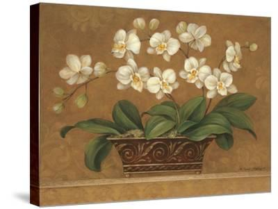Orchid Tapestry-Pamela Gladding-Stretched Canvas Print