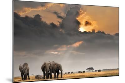 African Sunset with Elephants-Oleg Znamenskiy-Mounted Photographic Print