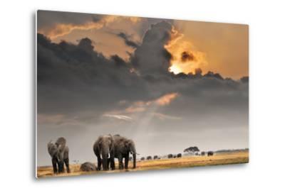 African Sunset with Elephants-Oleg Znamenskiy-Metal Print
