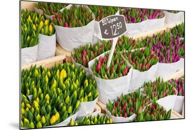 Tulip Flowers from Holland for Sale , Amsterdam Floral Market.-neirfy-Mounted Photographic Print