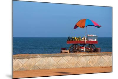 Seafront View of Vendor's Cart with Fruits- Polryaz-Mounted Photographic Print