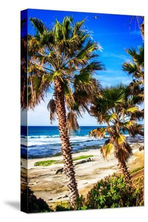 La Jolla Palms II-Alan Hausenflock-Stretched Canvas Print
