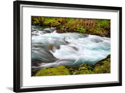 Rainforest River II-Douglas Taylor-Framed Photo