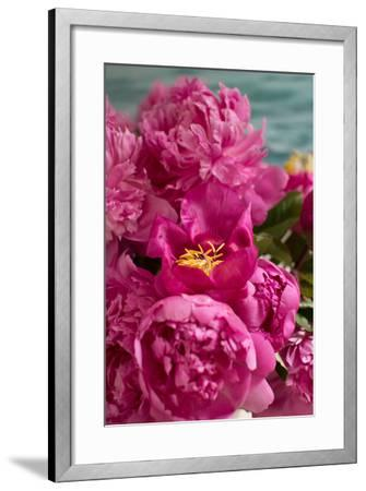 Fuchsia Peonies II-Karyn Millet-Framed Photo