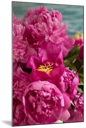 Fuchsia Peonies II-Karyn Millet-Mounted Photo