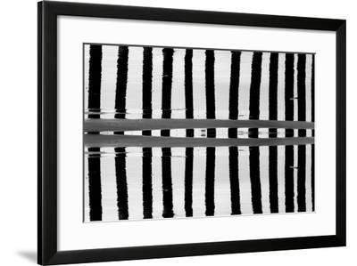 Reflected Dual Pilings-Lee Peterson-Framed Photo