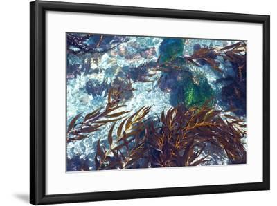 Mermaid Tresses I-Rita Crane-Framed Photo