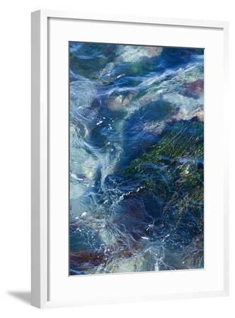 Tide Pool I-Rita Crane-Framed Photo