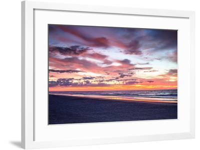 Gulls on the Shore I-Alan Hausenflock-Framed Photo