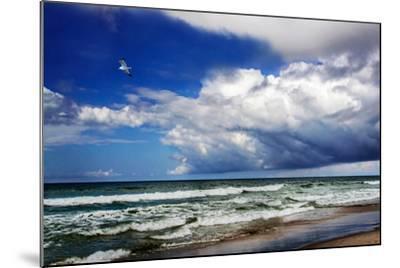 Awesome Beach Day II-Alan Hausenflock-Mounted Photo