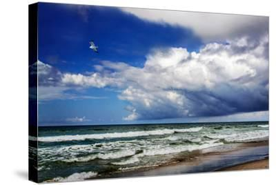 Awesome Beach Day II-Alan Hausenflock-Stretched Canvas Print