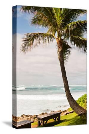 Peaceful Caribbean I-Karyn Millet-Stretched Canvas Print