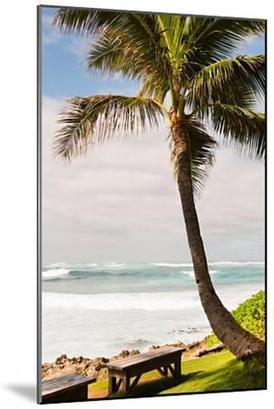 Peaceful Caribbean I-Karyn Millet-Mounted Photo
