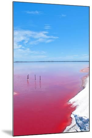 Pink Lake, Western Australia. this Lake Turns Pink in Summer Cause of an Algae with Red Pigments. T-Konrad Mostert-Mounted Photographic Print