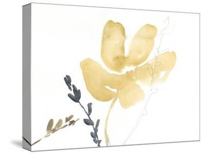 Branch Contours III-Jennifer Goldberger-Stretched Canvas Print