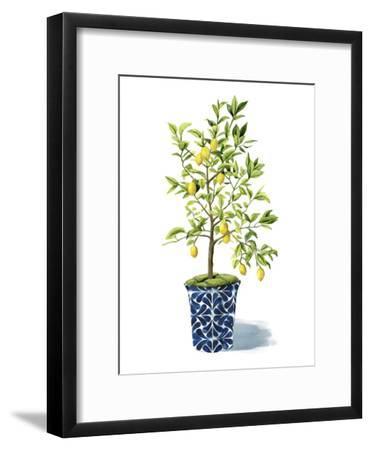 Fruit Tree II-Grace Popp-Framed Art Print