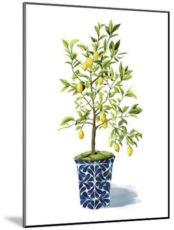 Fruit Tree II-Grace Popp-Mounted Art Print