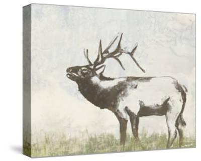 Wild Call I-Jennifer Goldberger-Stretched Canvas Print