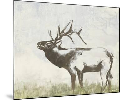 Wild Call I-Jennifer Goldberger-Mounted Art Print