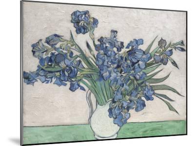 Irises-Vincent van Gogh-Mounted Art Print