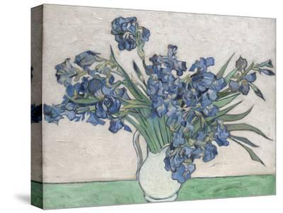 Irises-Vincent van Gogh-Stretched Canvas Print