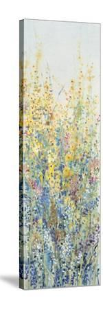 Wildflower Panel III-Tim OToole-Stretched Canvas Print