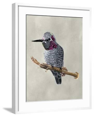 Winged Beauty IV-Naomi McCavitt-Framed Art Print