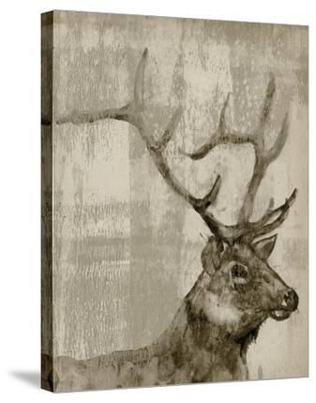 Sepia Elk-Jennifer Goldberger-Stretched Canvas Print