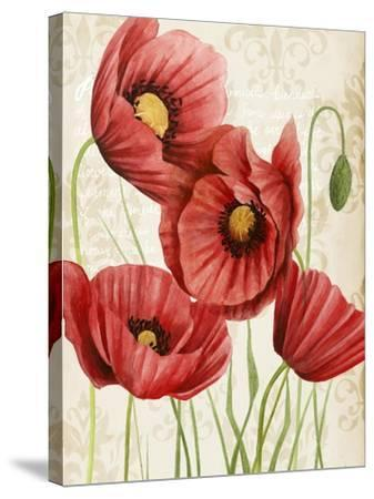 Poised Poppy II-Grace Popp-Stretched Canvas Print
