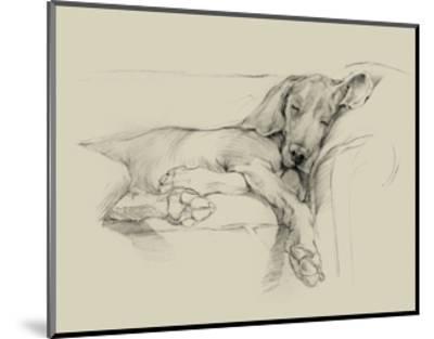 Dog Days I-Ethan Harper-Mounted Art Print