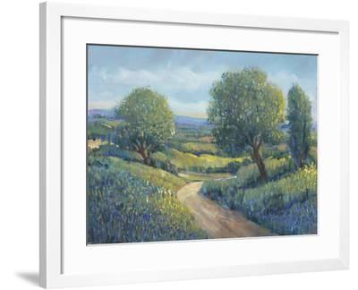 Country Sentrees II-Tim OToole-Framed Art Print