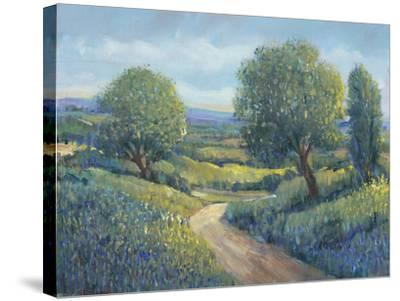 Country Sentrees II-Tim OToole-Stretched Canvas Print