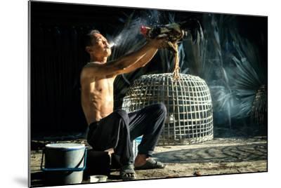Man Cleaning Thai Gamecock- SantiPhotoSS-Mounted Photographic Print