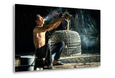 Man Cleaning Thai Gamecock- SantiPhotoSS-Metal Print