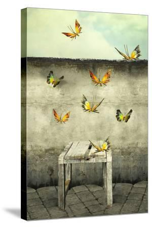 Many Colorful Butterflies Flying into the Sky with a Peeling Wall and a Bench, Illustrative Photo A-Valentina Photos-Stretched Canvas Print