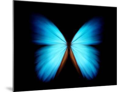 BLUE MORPHO- ethylalkohol-Mounted Photographic Print