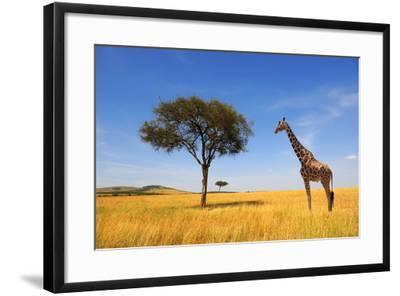 Beautiful Landscape with Tree and Giraffe in Africa-Volodymyr Burdiak-Framed Photographic Print